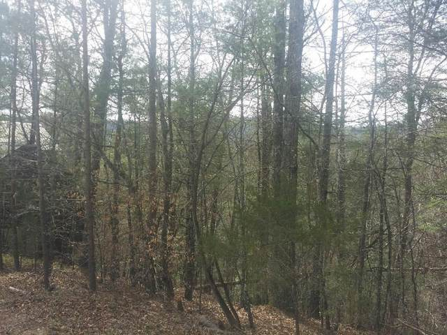 Tolliver Trail, Townsend, TN 37882 (#1146682) :: Cindy Kraus Group | Realty Executives Associates