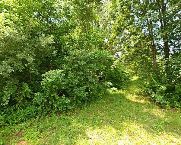 Winding Ridge Trail, Seymour, TN 37865 (#1146737) :: Catrina Foster Group