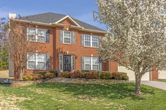 1445 Wineberry Rd, Powell, TN 37849 (#1146899) :: Billy Houston Group