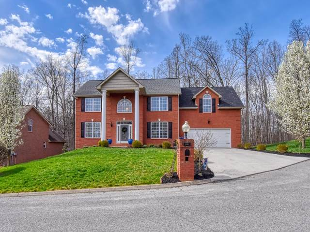 8339 Bay Garden Lane, Knoxville, TN 37938 (#1146911) :: Billy Houston Group