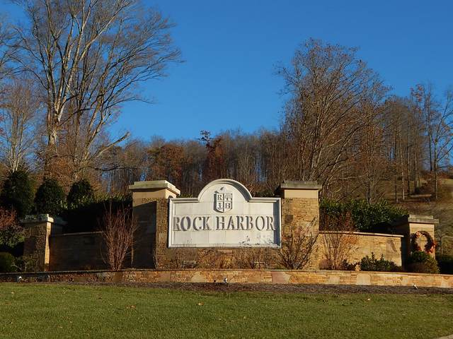 Moonstone Lane, New Tazewell, TN 37825 (#1146913) :: Billy Houston Group