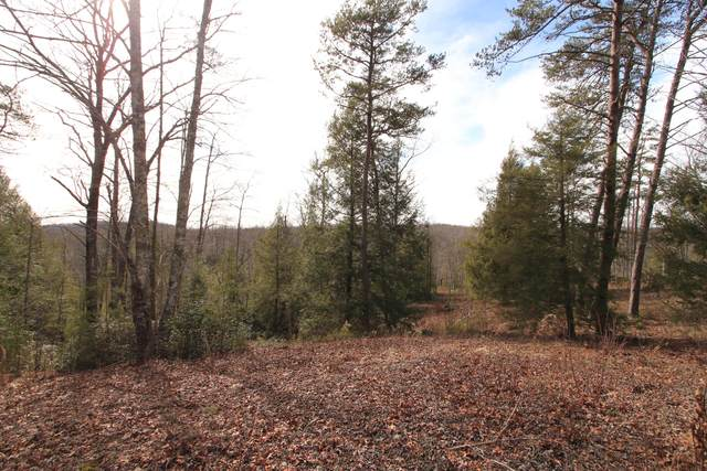 Lot 70 Big Leaf Cove, Jamestown, TN 38556 (#1146979) :: Cindy Kraus Group | Realty Executives Associates