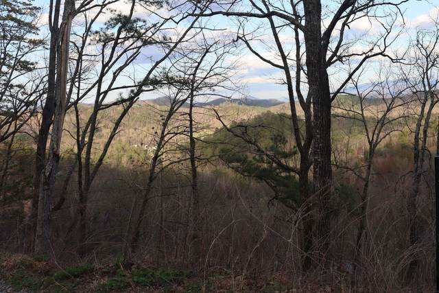 Lonesome Pine Way, Sevierville, TN 37862 (#1146999) :: Adam Wilson Realty