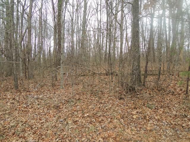 James George Road, Jamestown, TN 38556 (#1147048) :: Adam Wilson Realty