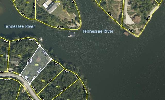 Lot # 111 Thief Neck Drive, Rockwood, TN 37854 (#1147052) :: Adam Wilson Realty