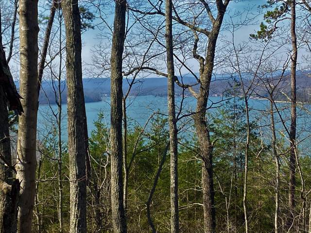 Lot 93 Indian Shadows Dr., Ten Mile, TN 37880 (#1147120) :: Tennessee Elite Realty