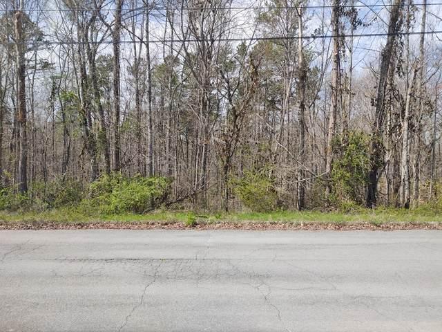 Water Oak Drive, Seymour, TN 37865 (#1147159) :: Shannon Foster Boline Group