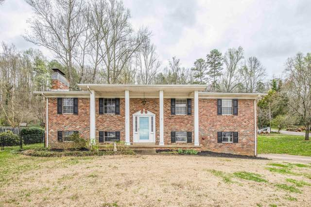 6700 Ottari Drive, Knoxville, TN 37918 (#1147247) :: A+ Team