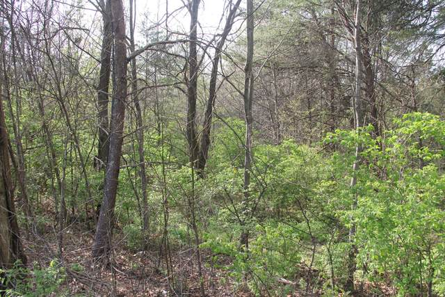 4608 Harrell Lane, Knoxville, TN 37938 (#1147331) :: Billy Houston Group