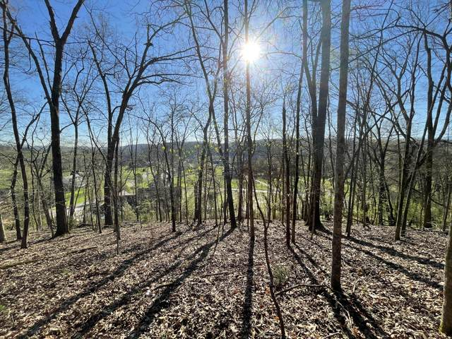 Lot 69 Lazy River Lane, Sevierville, TN 37876 (#1147389) :: The Terrell Team