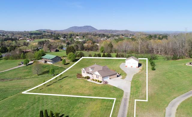 248 Willard Way, Blaine, TN 37709 (#1147395) :: Catrina Foster Group