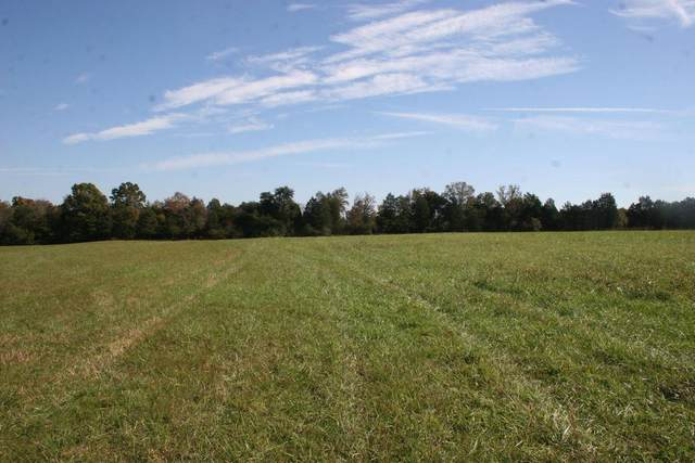 1014 Oak Grove Rd, Madisonville, TN 37354 (#1147462) :: Catrina Foster Group