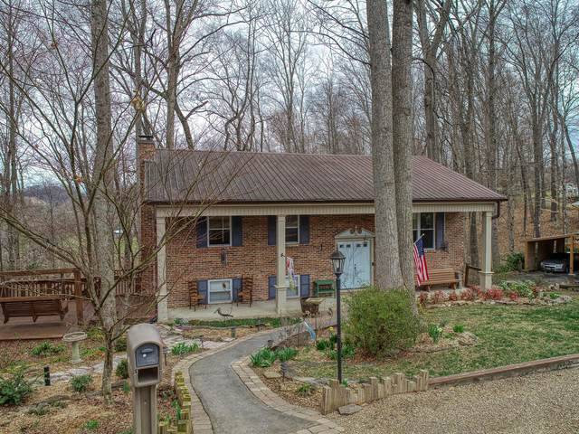 165 Forest Hills Rd, Rogersville, TN 37857 (#1147490) :: Cindy Kraus Group | Realty Executives Associates