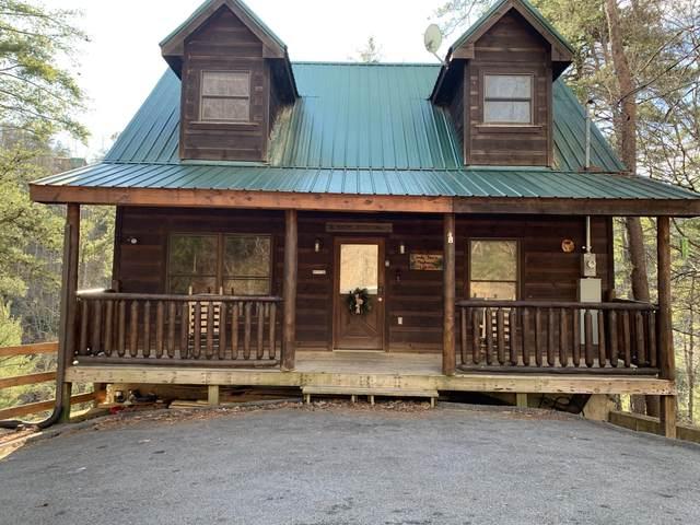 717 Ski View Lane, Sevierville, TN 37876 (#1147523) :: JET Real Estate
