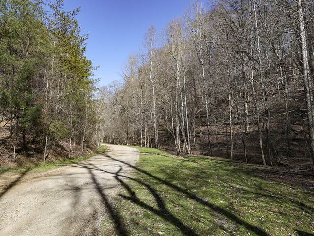 Legion Way Way, Sevierville, TN 37876 (#1147532) :: Shannon Foster Boline Group