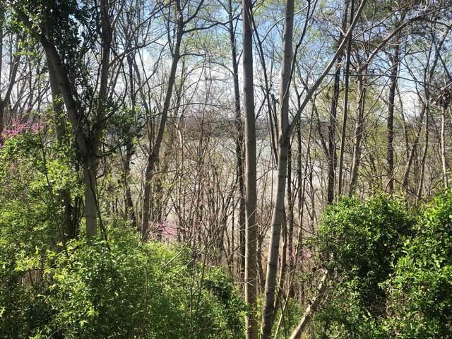 Lot 71R Stone Vista Way, Dandridge, TN 37725 (#1147558) :: JET Real Estate