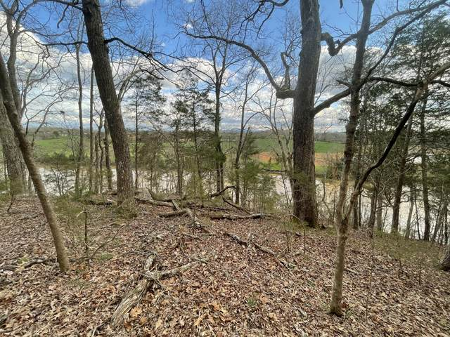 Lot 10 Deep River Drive Drive, Sevierville, TN 37876 (#1147637) :: Billy Houston Group