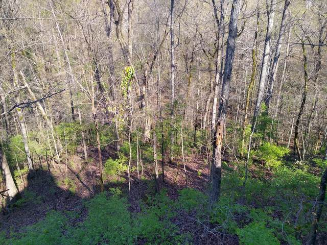 0 Maples Crossing Rd, Kodak, TN 37764 (#1147655) :: Tennessee Elite Realty