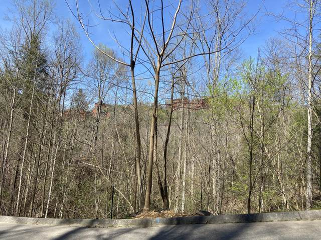 Lot #71 Smoky Ridge Way, Sevierville, TN 37862 (#1147732) :: Adam Wilson Realty