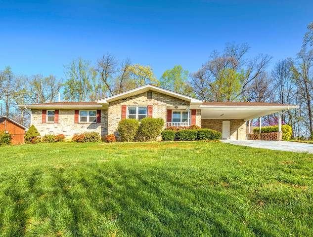 6628 Wachese Lane, Knoxville, TN 37912 (#1147816) :: Adam Wilson Realty