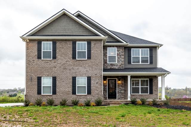 213 Bluff Shadows Lane, Seymour, TN 37865 (#1147826) :: Adam Wilson Realty