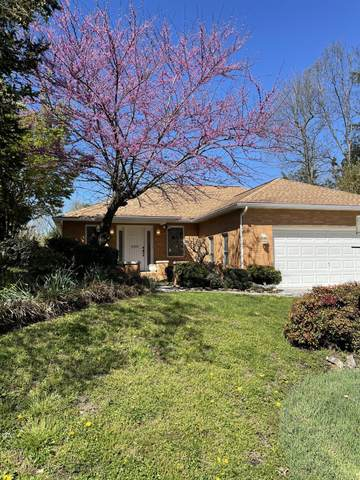 1031 Saint Johns Drive, Maryville, TN 37801 (#1147929) :: Shannon Foster Boline Group
