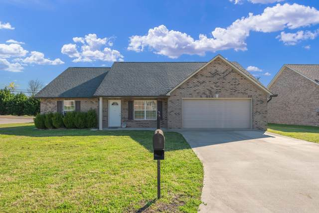6554 Colossal Lane, Corryton, TN 37721 (#1147984) :: Shannon Foster Boline Group