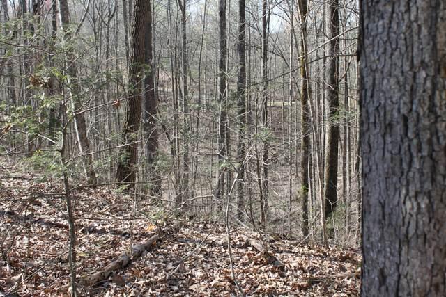 Hunter Hills Way, Sevierville, TN 37876 (#1148019) :: Realty Executives Associates