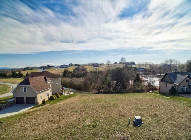 1641 Rarity Bay Pkwy, Vonore, TN 37885 (#1148049) :: Adam Wilson Realty