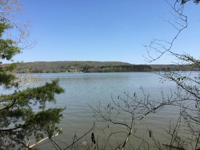 Lot 109 E Shore Lane, Rockwood, TN 37854 (#1148240) :: Adam Wilson Realty
