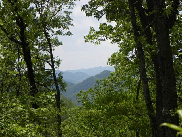 Lot 55/56 Long Rifle Rd, Sevierville, TN 37862 (#1148319) :: Shannon Foster Boline Group