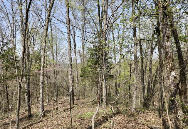 Lot # 137 Polly Mountain Rd, Madisonville, TN 37354 (#1148373) :: Billy Houston Group