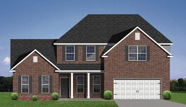 11044 Big Sky Lane Lane, Knoxville, TN 37932 (#1148426) :: Shannon Foster Boline Group