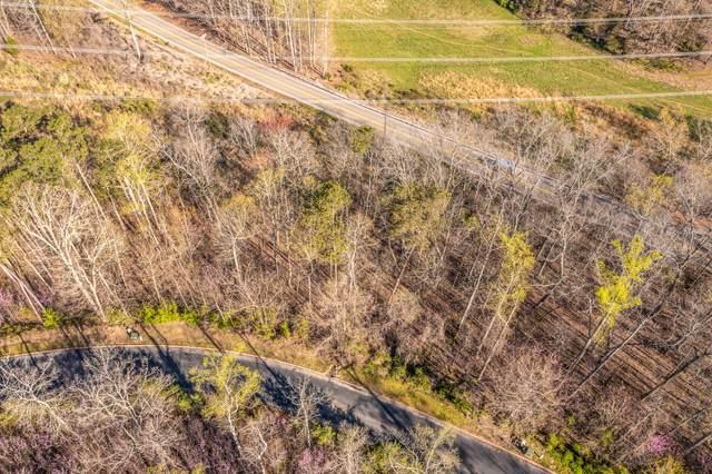 Lot 4 Shiloh Springs Rd, Rutledge, TN 37861 (#1148479) :: Cindy Kraus Group | Realty Executives Associates
