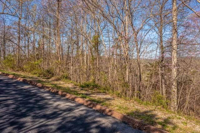 Lot 5 Shiloh Springs Rd, Rutledge, TN 37861 (#1148486) :: Shannon Foster Boline Group