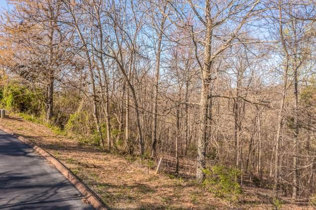 Lot 6 Shiloh Springs Rd, Rutledge, TN 37861 (#1148493) :: Shannon Foster Boline Group