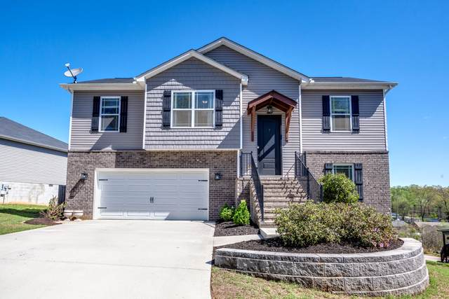 3435 Boulder Point Lane, Powell, TN 37849 (#1148511) :: Billy Houston Group