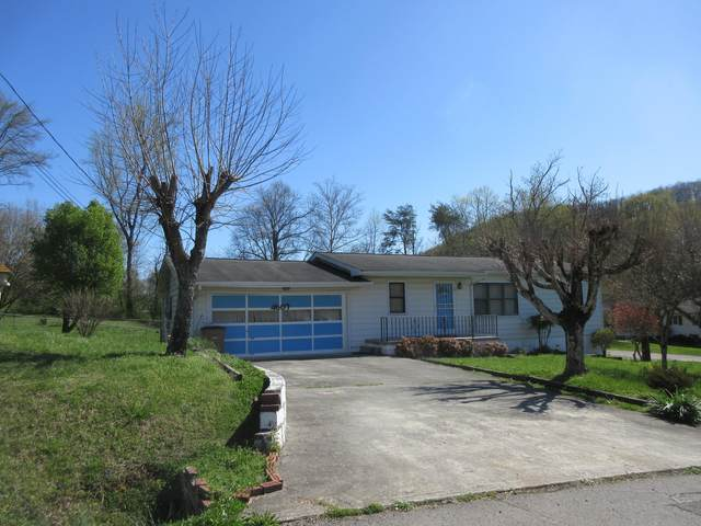 4607 Joephine Rd, Knoxville, TN 37918 (#1148537) :: Adam Wilson Realty
