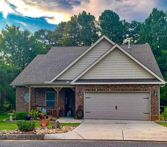 6005 Park Shadow Way, Knoxville, TN 37924 (#1148573) :: Billy Houston Group