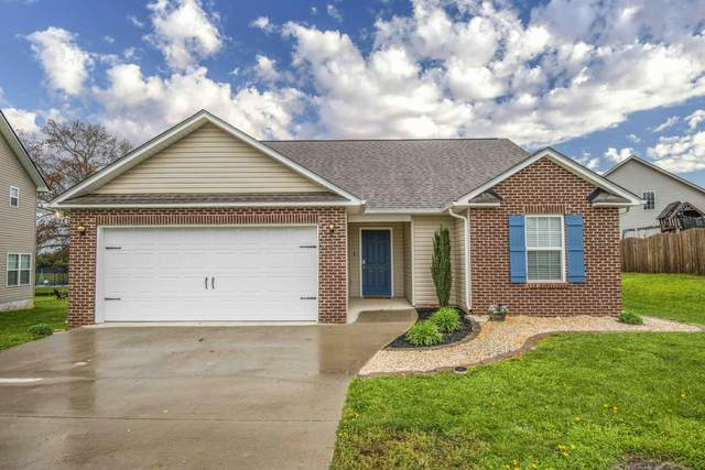 7831 Edwards Place Blvd, Corryton, TN 37721 (#1148600) :: Shannon Foster Boline Group