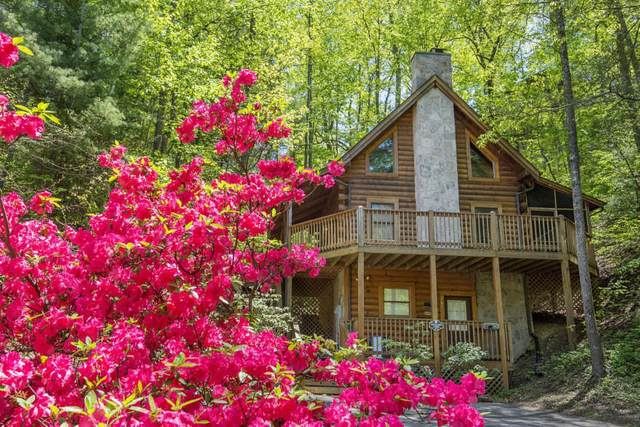 708 Golden Eagle Way, Pigeon Forge, TN 37863 (#1148613) :: The Terrell Team