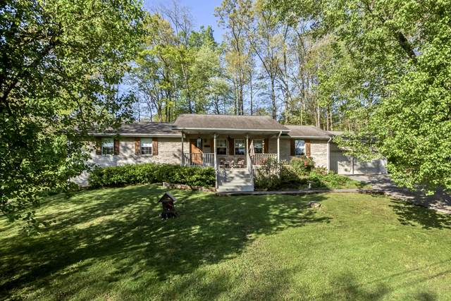 523 Pine Haven Drive, Rockwood, TN 37854 (#1148677) :: Catrina Foster Group