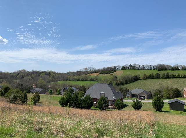Infinity Ln - Lot 40, Sevierville, TN 37876 (#1148738) :: Cindy Kraus Group | Realty Executives Associates