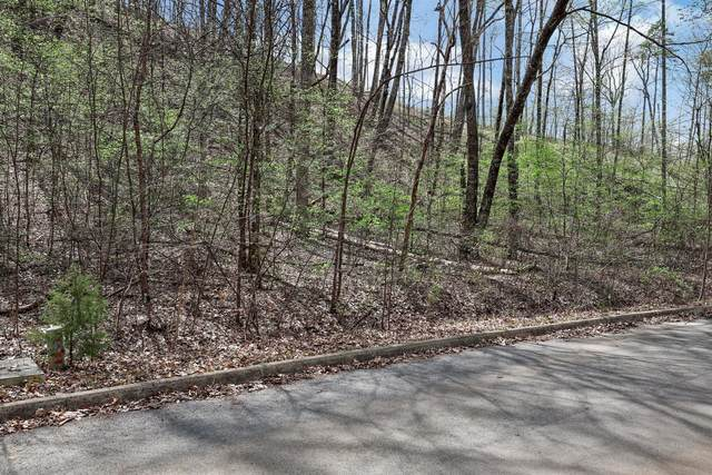 Cloud View Drive, Sevierville, TN 37862 (#1148869) :: JET Real Estate