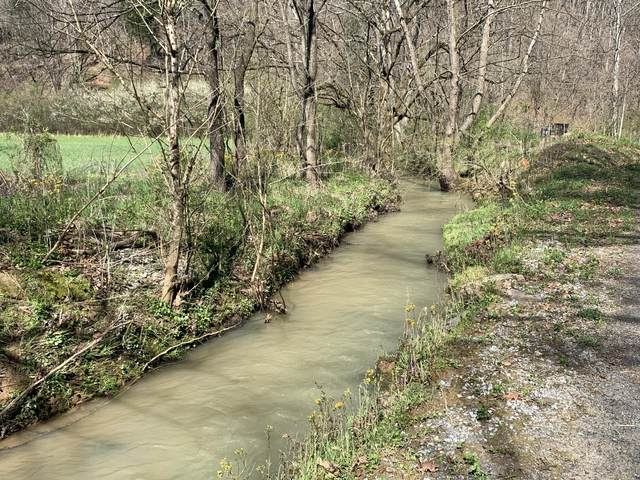 +-173.7 ac Middle Creek Rd, Cosby, TN 37722 (#1148875) :: Billy Houston Group