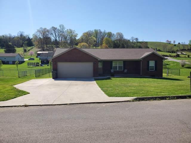 587 Altina Circle, New Tazewell, TN 37825 (#1148877) :: Cindy Kraus Group | Realty Executives Associates