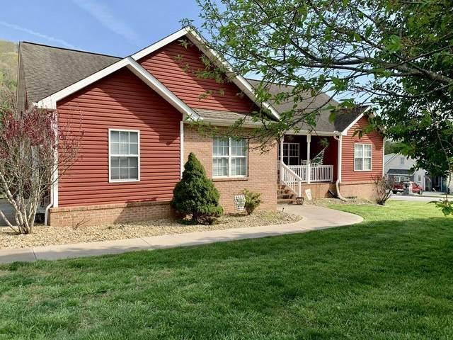 226 Mountain Meadow Lane, Clinton, TN 37716 (#1149062) :: JET Real Estate