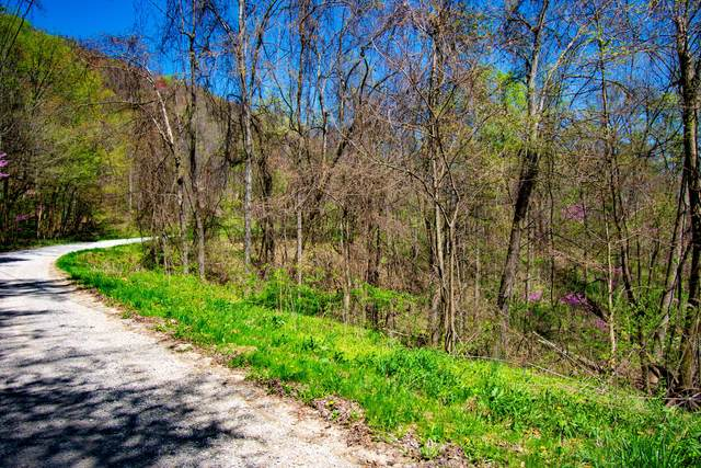 Lot 25 Campbell Highlands Drive, Pioneer, TN 37847 (#1149100) :: Billy Houston Group