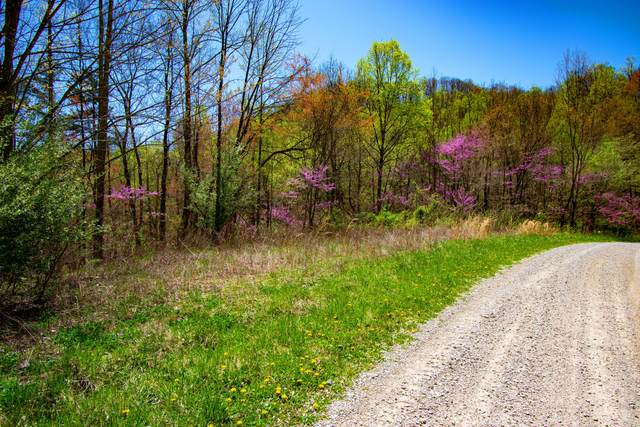 Lot 26 Campbell Highlands Drive, Pioneer, TN 37847 (#1149101) :: Billy Houston Group