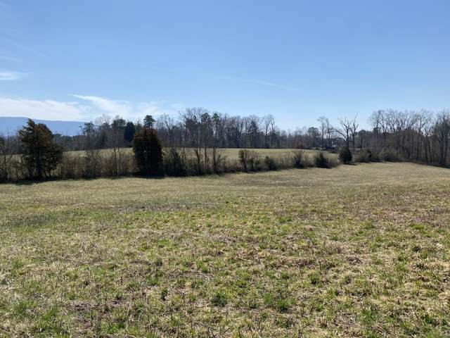 Baumgardner Rd, Maryville, TN 37803 (#1149107) :: Tennessee Elite Realty